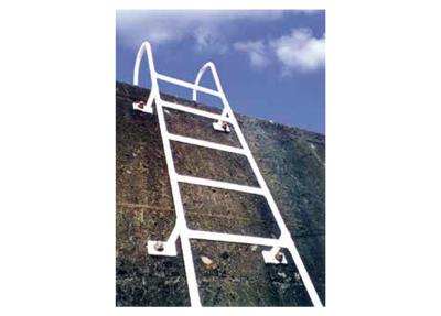 ゴムライニング梯子 実績