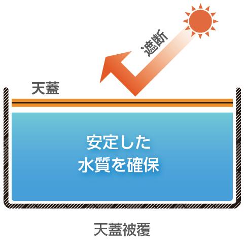 天蓋システム適用後:日光を遮断し、安定した水質を確保